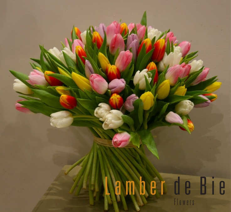 Tulip bouquet from Lamber de Bie Flowers in Waterford , Kilkenny